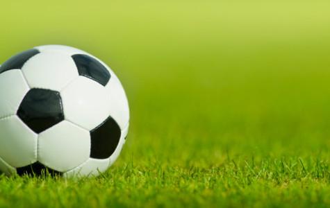 Boys Soccer 2014 season preview