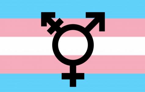 Gender identity in Geneva