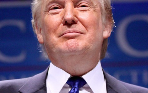 Is Donald Trump mirroring Adolf Hitler's tactics to rise to power?