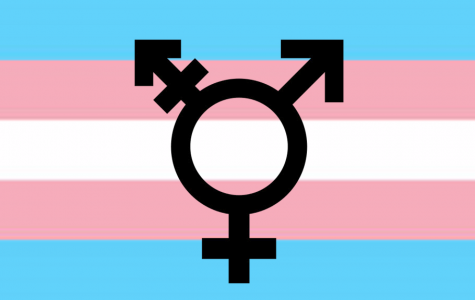 Gender identity in Geneva
