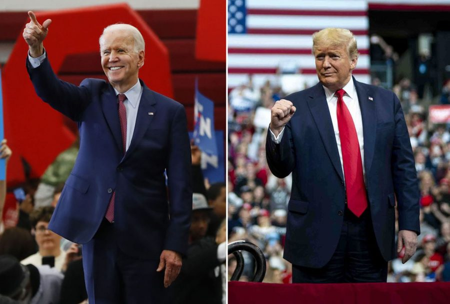 Political polls point to a Biden win; but how accurate are they?